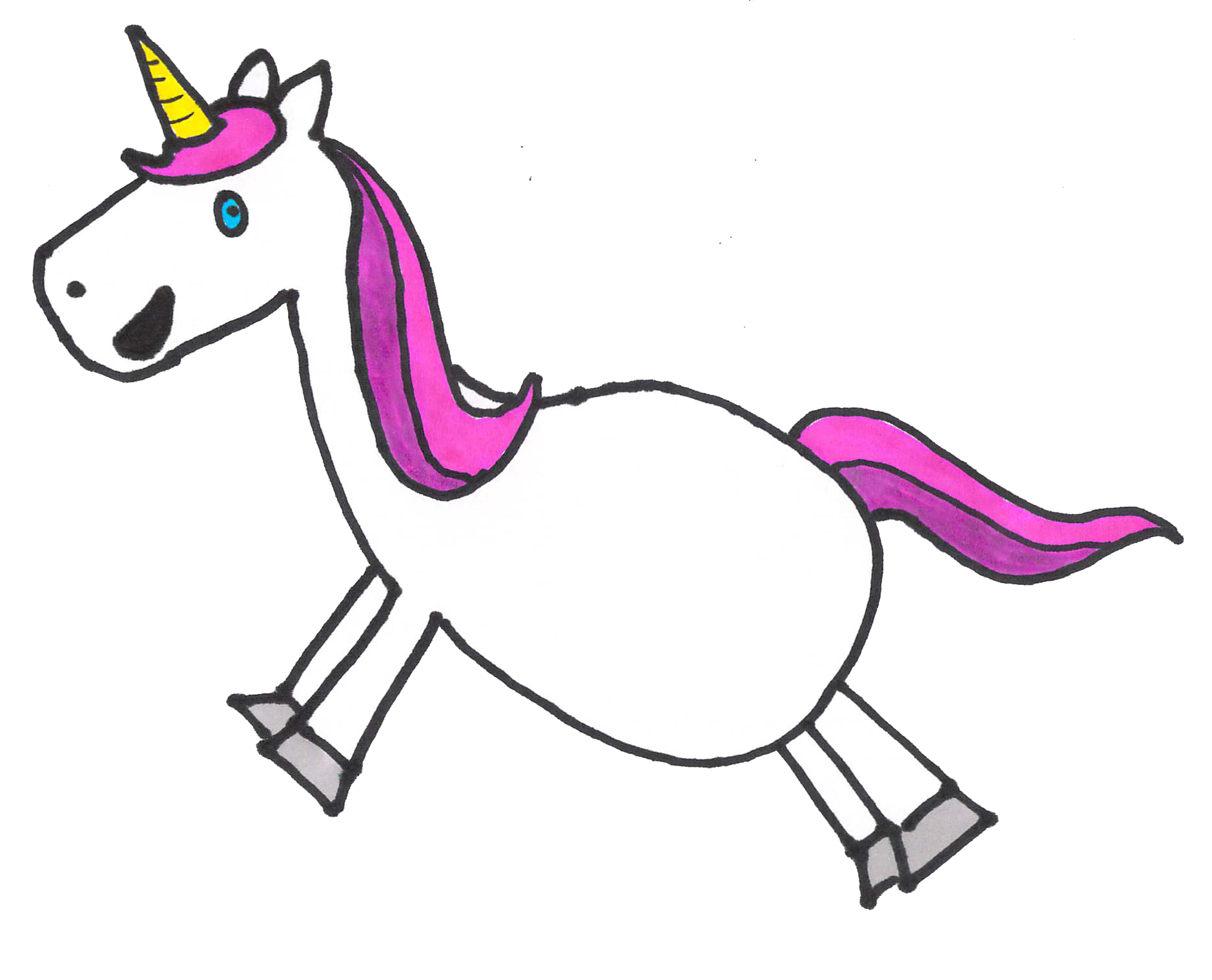 Silicon Valley Startup Unicorn